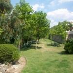 Residencia geriátrica Las Matas - Jardín