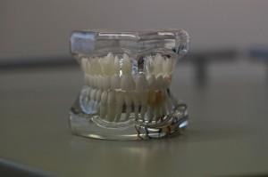 dentistry-668214_640