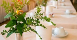 servicio de comedor en residencia geriátrica
